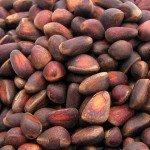 Польза кедровых орешков
