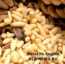 Витамины в кедровых орехах